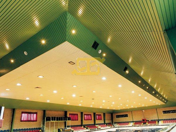 سقف کاذب طاهاگریلیوم · لوور و کناف · دامپای سه بعدی 3